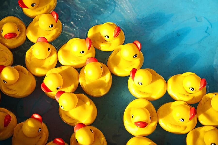 What is Duck Duck Go?