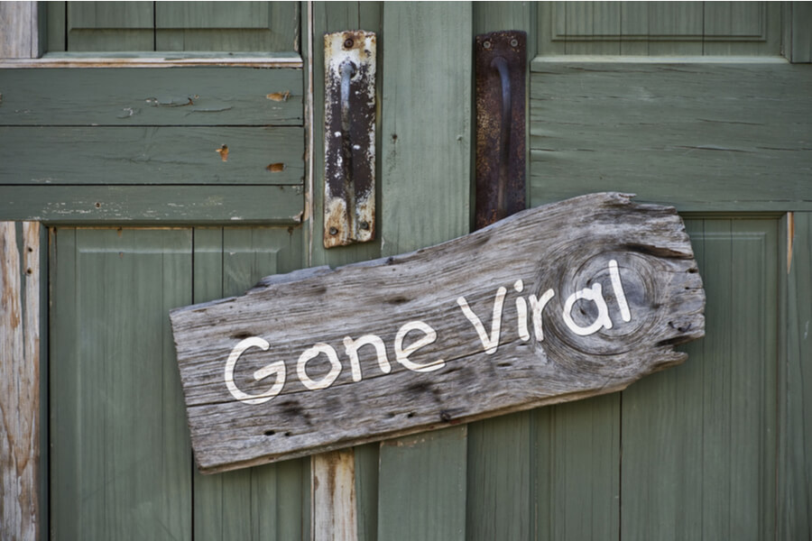 Creating a viral marketing campaign
